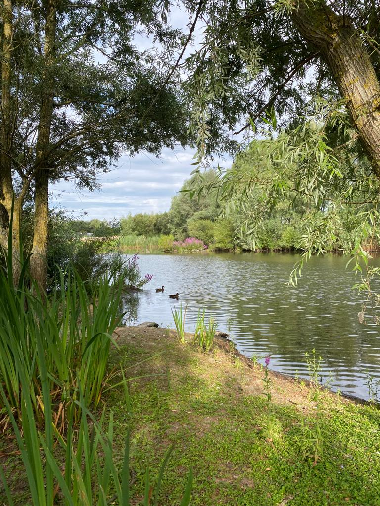 Green Park Lake